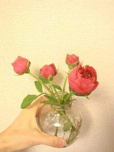 DSC07977.jpg